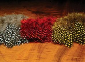 Strung Guinea Feathers