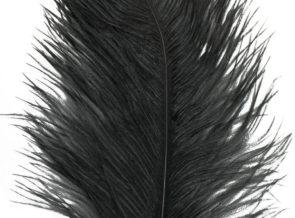 UV2 Big Bird Ostrich Plume/Herl