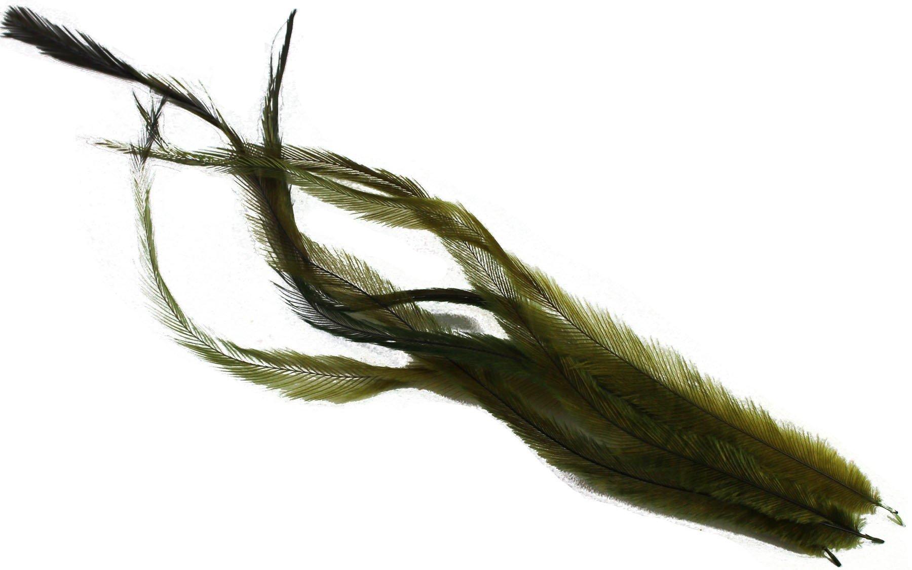 "UV2 ""big bird"" Emu feathers"