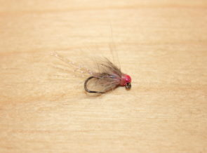 rabid pink squirrel jig