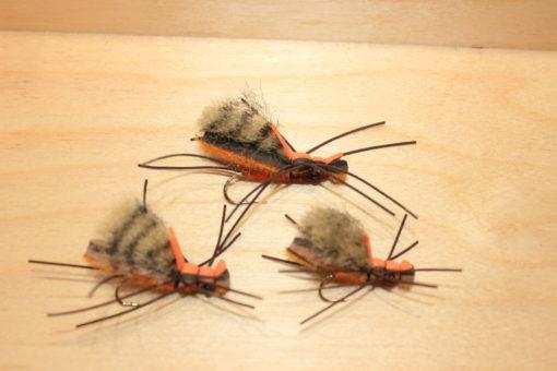 frankin salmonfly