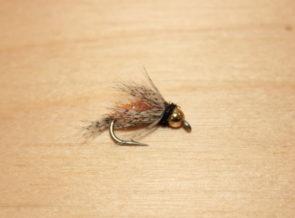 bird of prey october caddis
