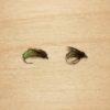 caddis larva